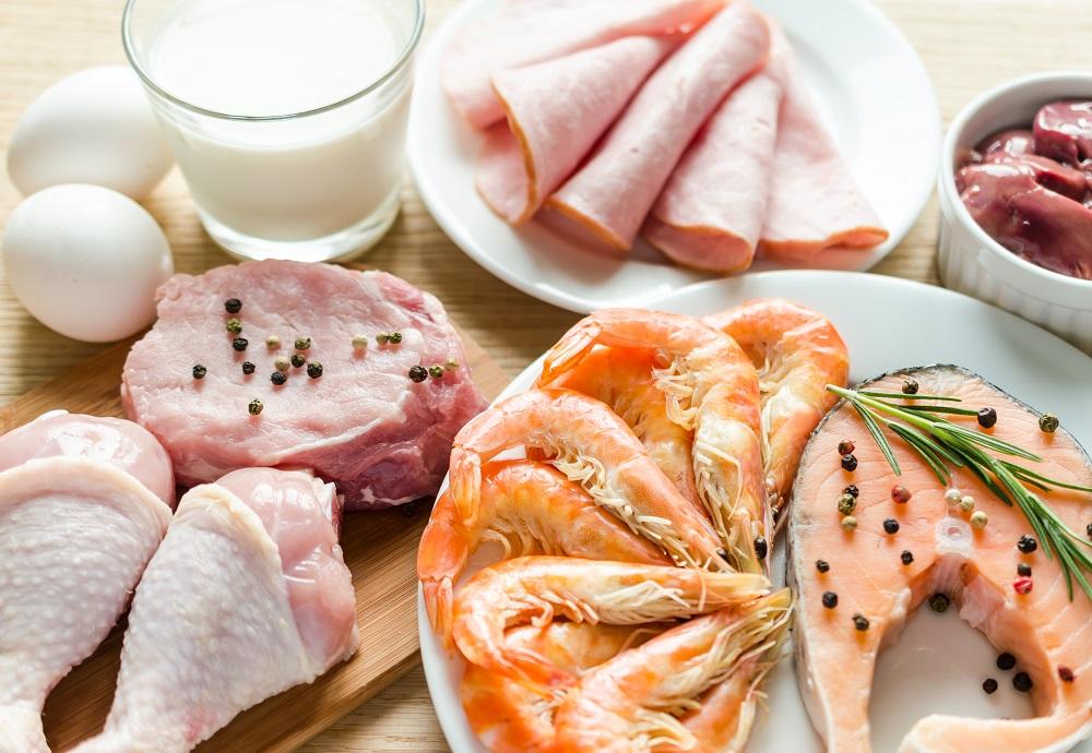 Co zawiera białko?